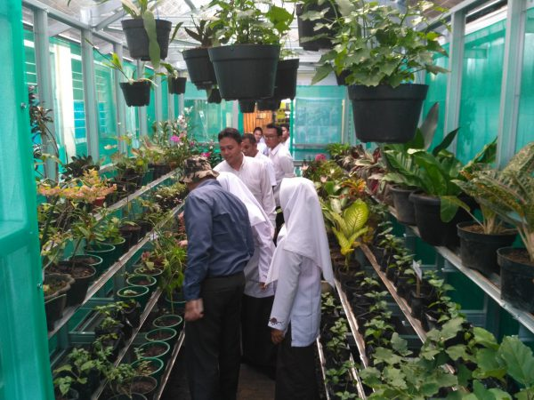 Manfaat 'Greenhouse'