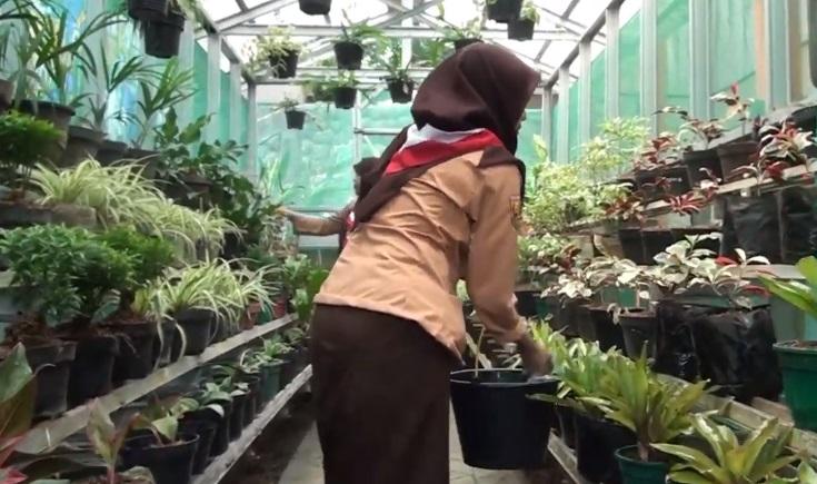 Video : Green House SMK PGRI Subang